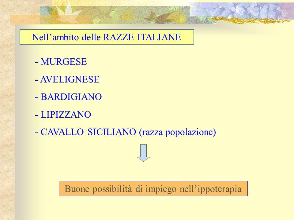 Nell'ambito delle RAZZE ITALIANE