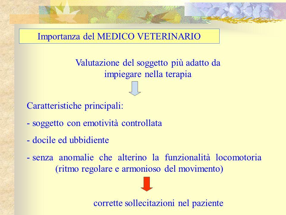 Importanza del MEDICO VETERINARIO