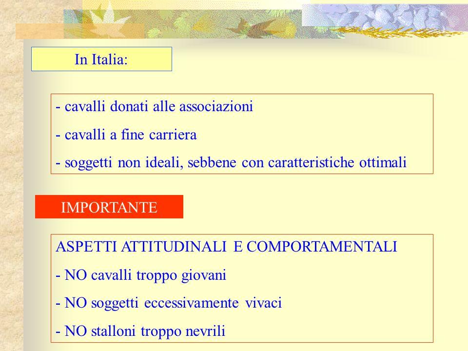 In Italia: cavalli donati alle associazioni. cavalli a fine carriera. soggetti non ideali, sebbene con caratteristiche ottimali.