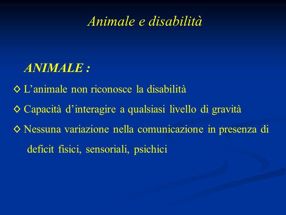 Animale e disabilità ANIMALE : L'animale non riconosce la disabilità