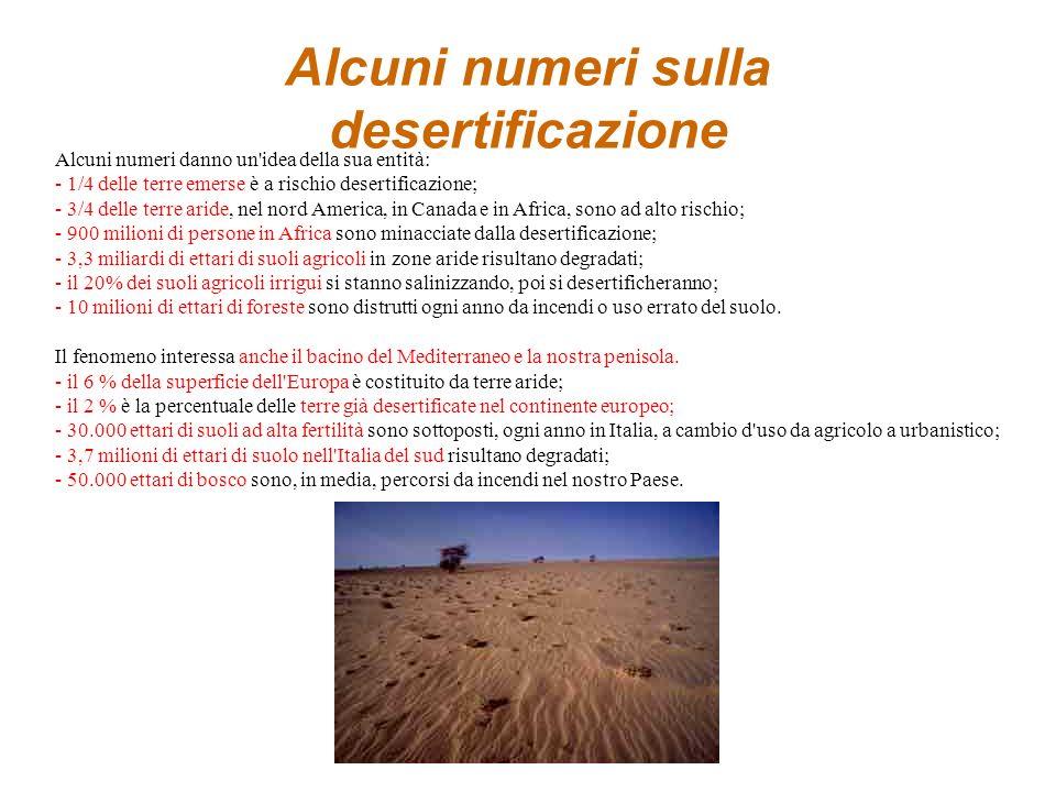Alcuni numeri sulla desertificazione