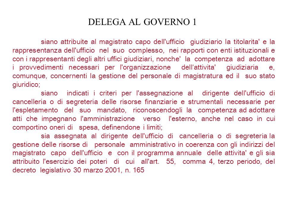 DELEGA AL GOVERNO 1