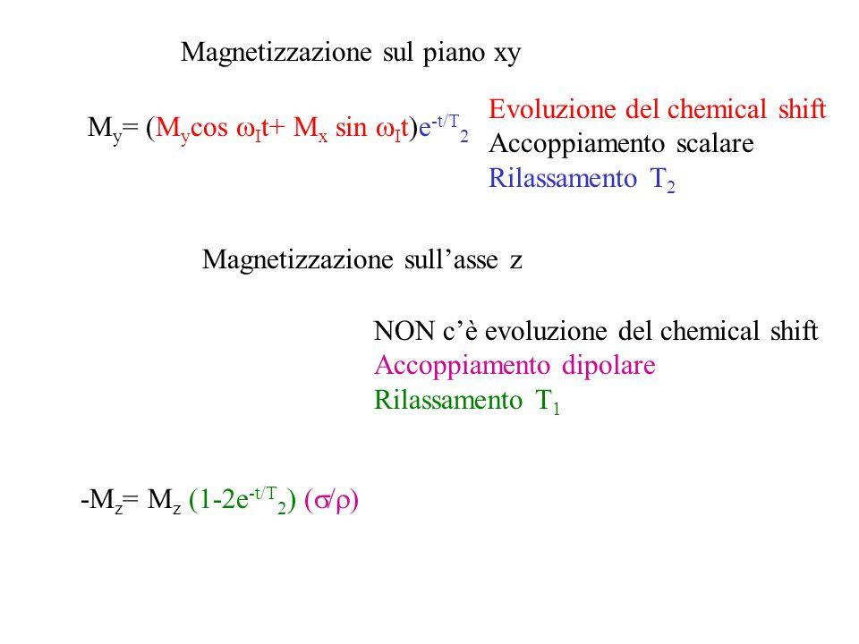 Magnetizzazione sul piano xy