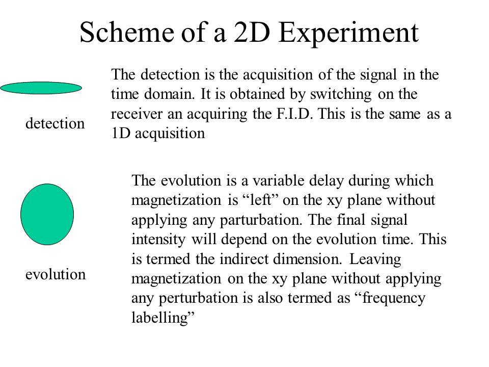Scheme of a 2D Experiment