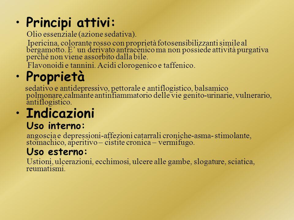 Principi attivi: Proprietà Indicazioni