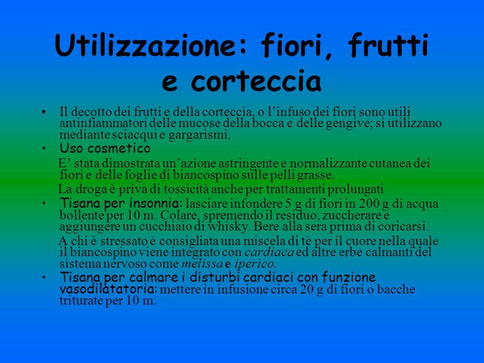 Utilizzazione: fiori, frutti e corteccia