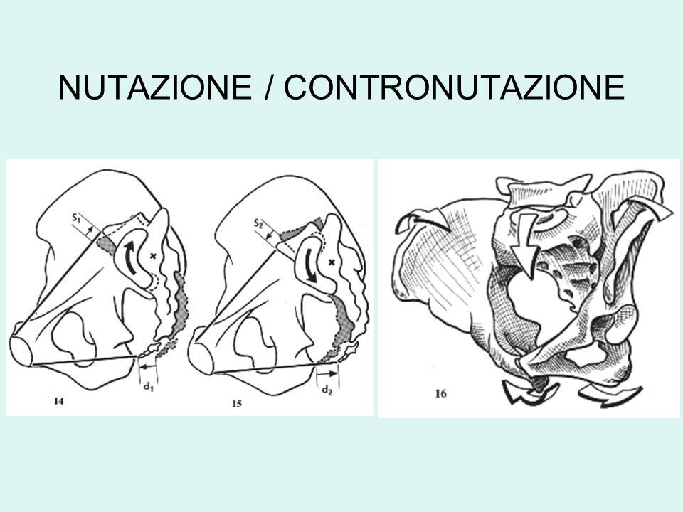 NUTAZIONE / CONTRONUTAZIONE