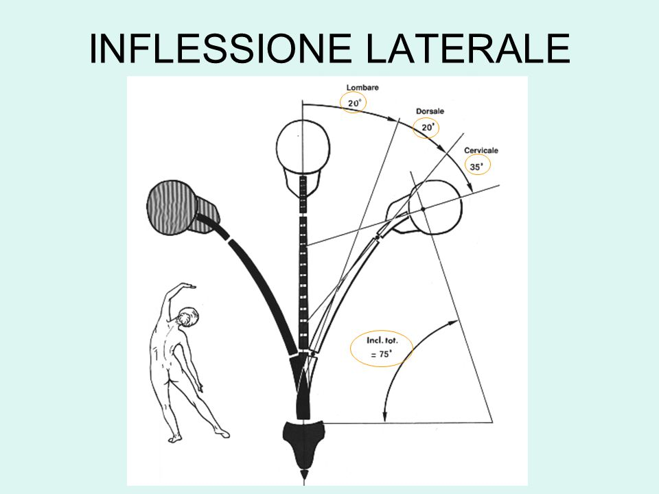 INFLESSIONE LATERALE