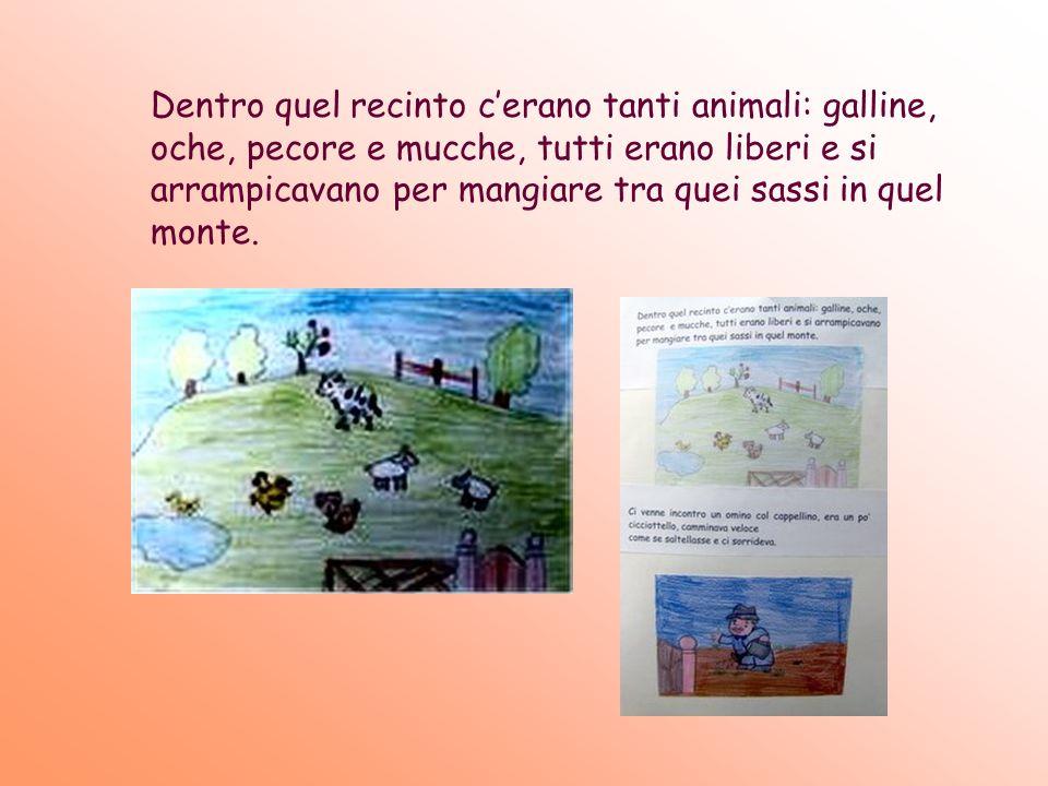 Dentro quel recinto c'erano tanti animali: galline, oche, pecore e mucche, tutti erano liberi e si arrampicavano per mangiare tra quei sassi in quel monte.