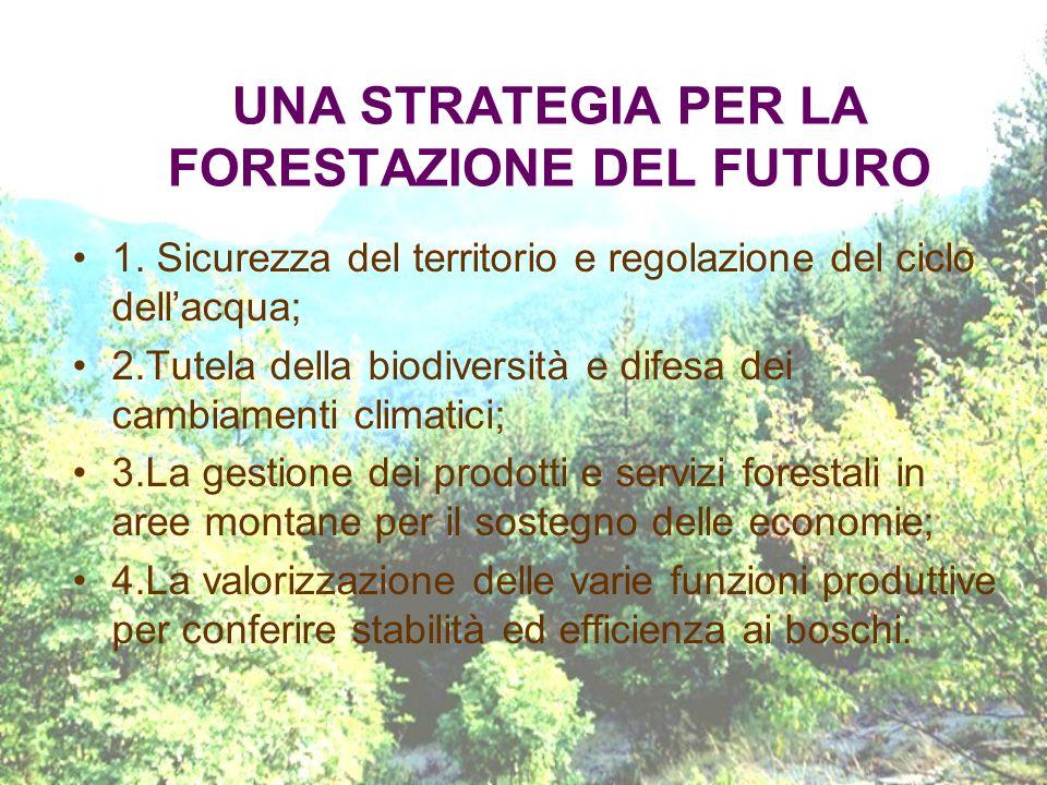 UNA STRATEGIA PER LA FORESTAZIONE DEL FUTURO