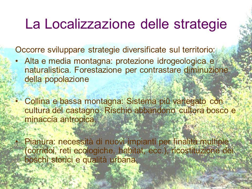 La Localizzazione delle strategie