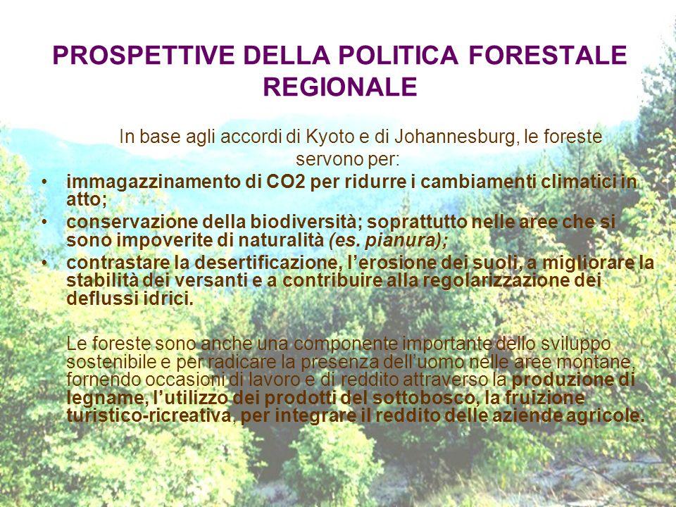 PROSPETTIVE DELLA POLITICA FORESTALE REGIONALE