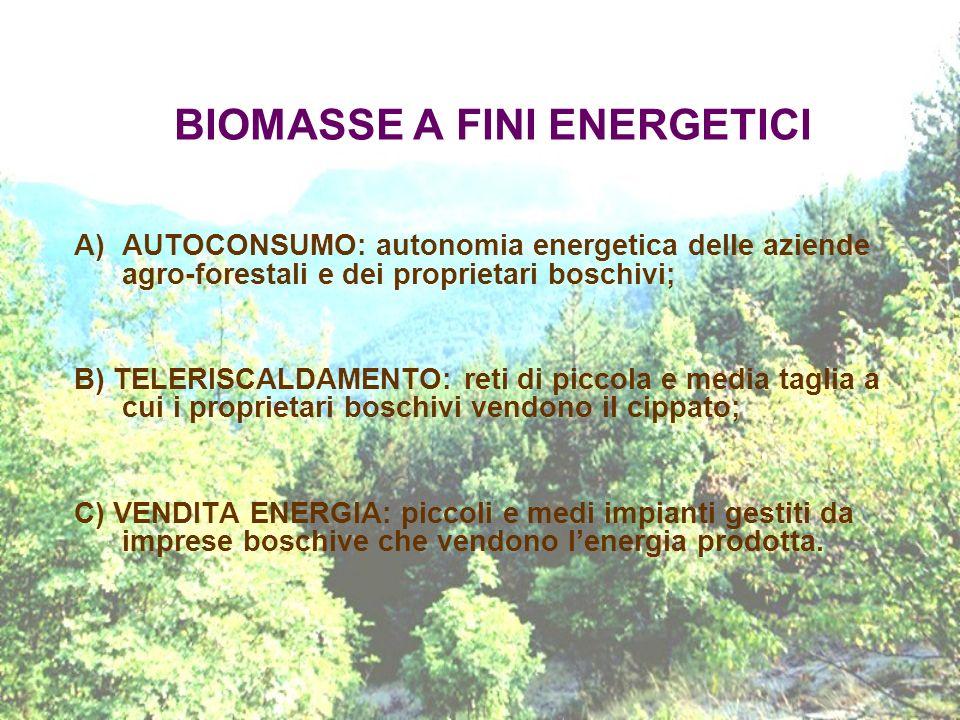 BIOMASSE A FINI ENERGETICI