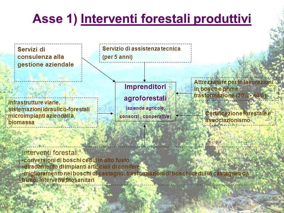 Asse 1) Interventi forestali produttivi