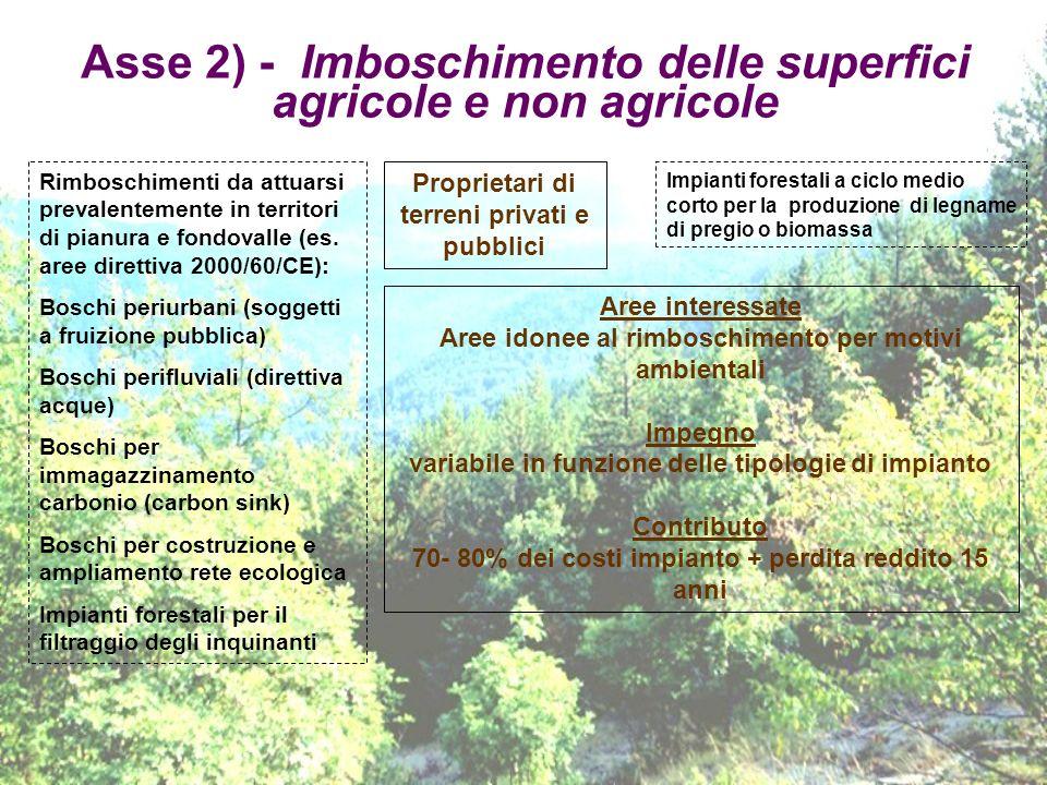 Asse 2) - Imboschimento delle superfici agricole e non agricole