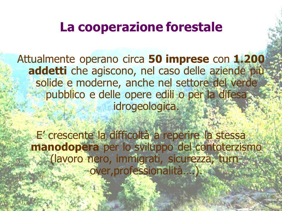 La cooperazione forestale