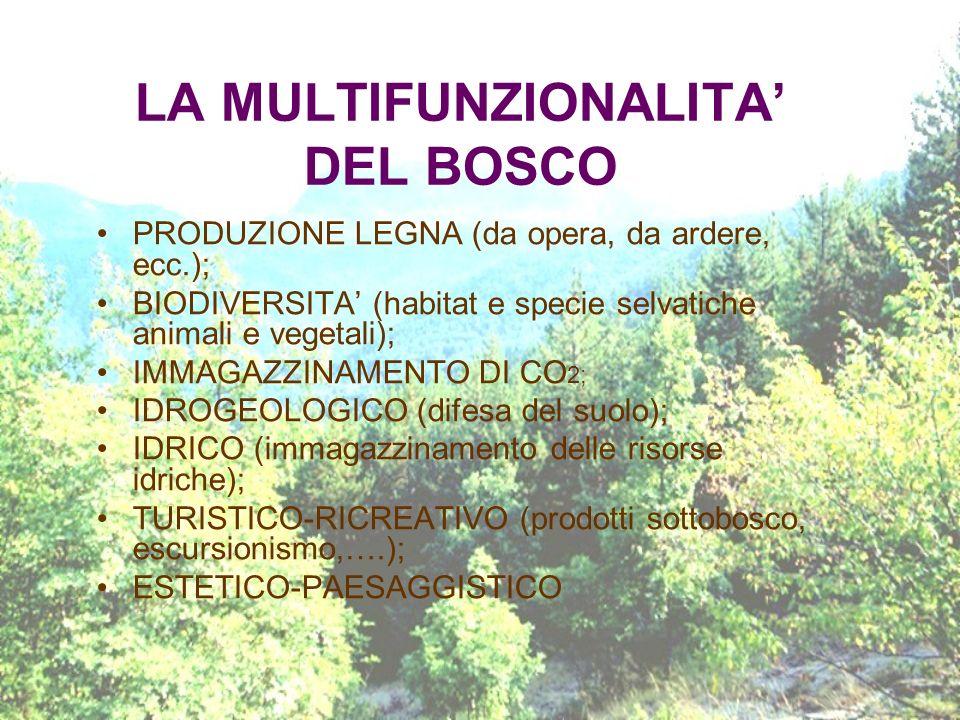LA MULTIFUNZIONALITA' DEL BOSCO