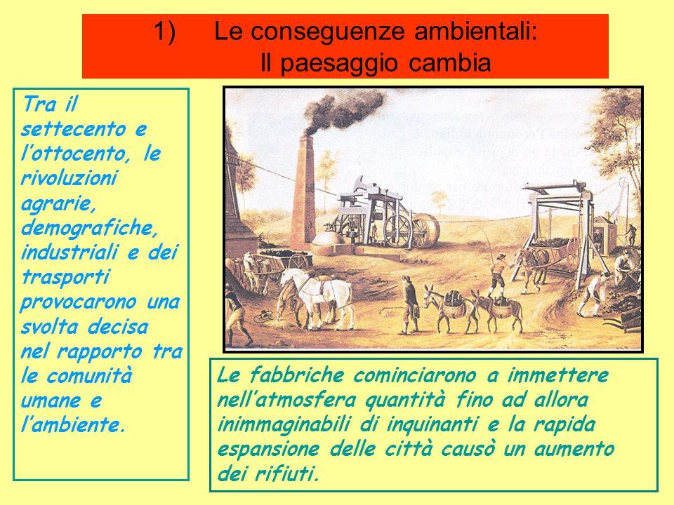 Le conseguenze ambientali: Il paesaggio cambia