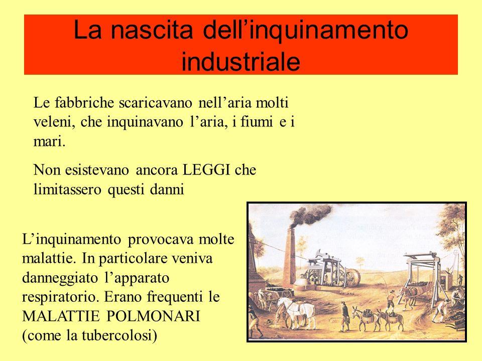 La nascita dell'inquinamento industriale
