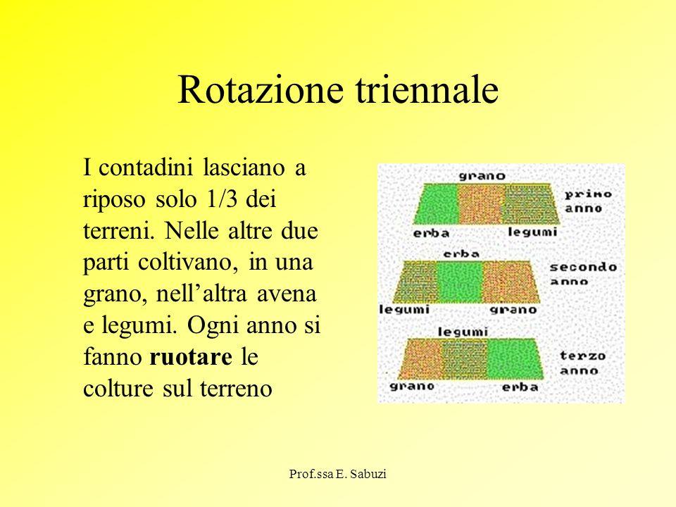 Rotazione triennale
