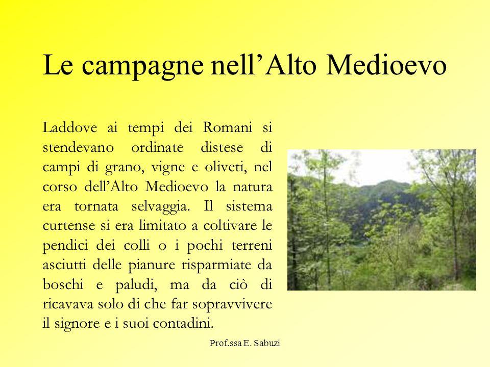 Le campagne nell'Alto Medioevo