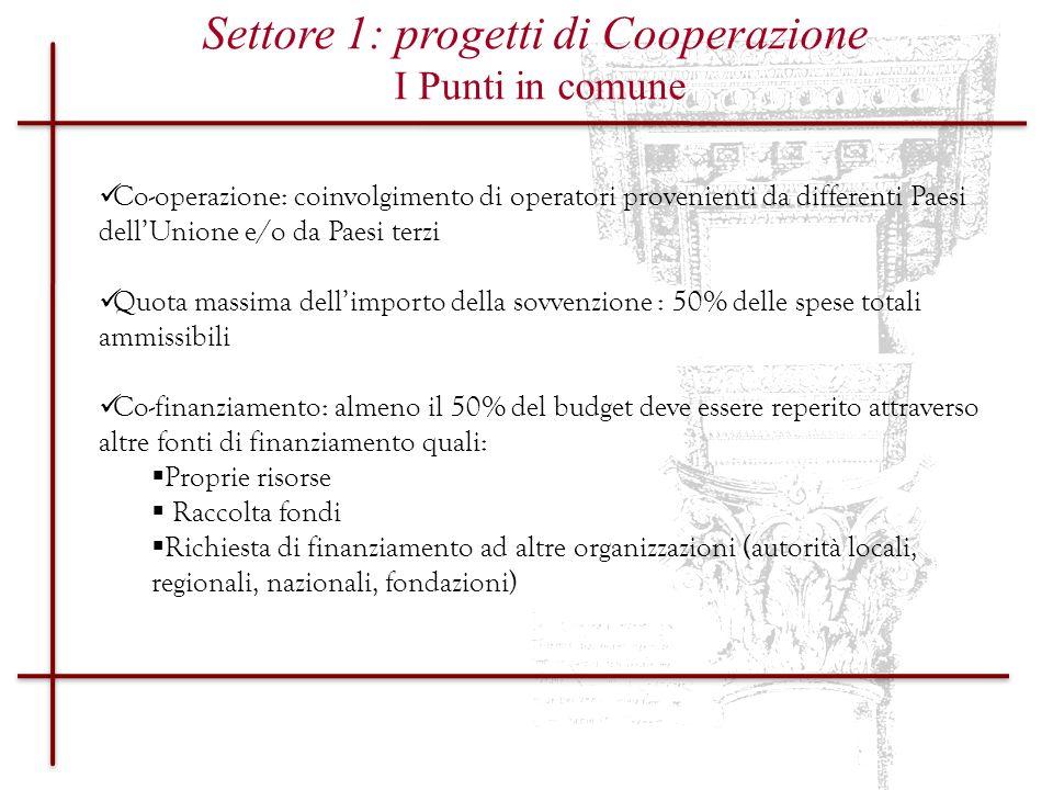 Settore 1: progetti di Cooperazione