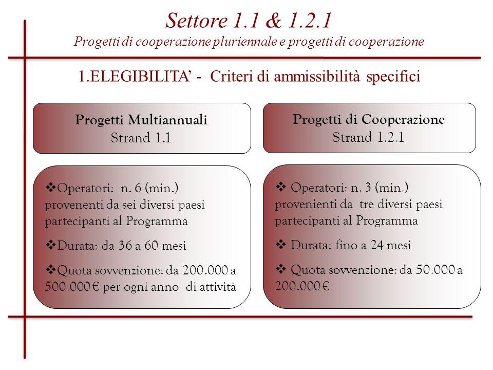 Progetti Multiannuali Progetti di Cooperazione