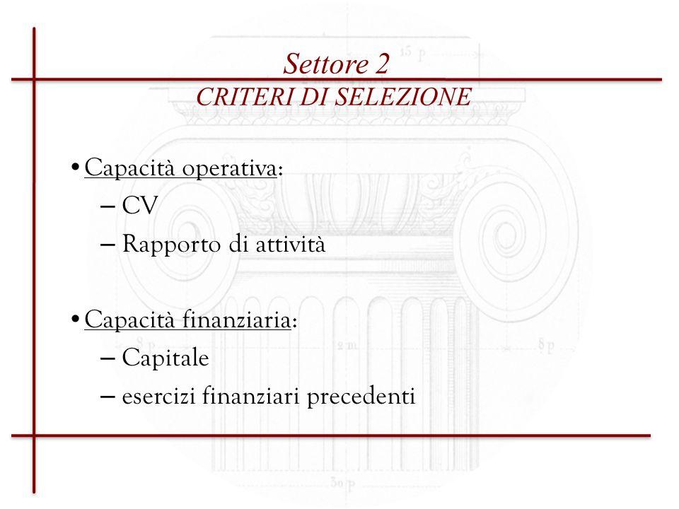 Settore 2 CRITERI DI SELEZIONE Capacità operativa: CV