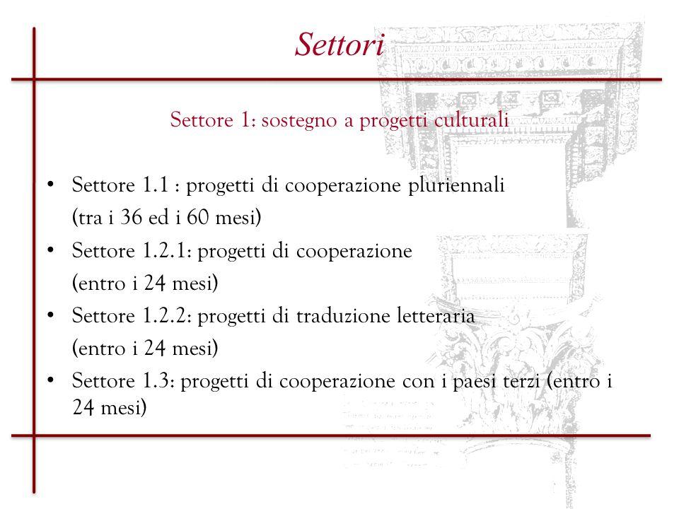 Settore 1: sostegno a progetti culturali