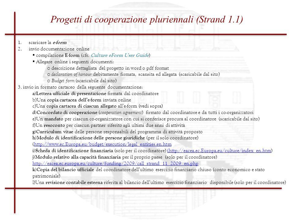 Progetti di cooperazione pluriennali (Strand 1.1)