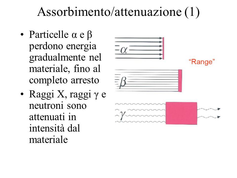 Assorbimento/attenuazione (1)