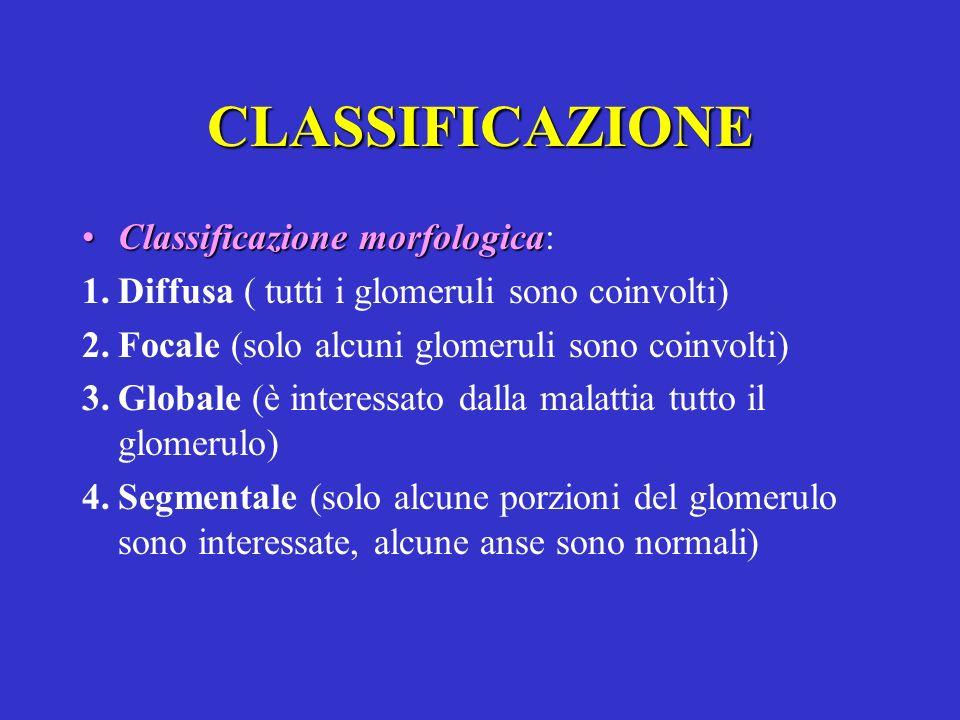 CLASSIFICAZIONE Classificazione morfologica:
