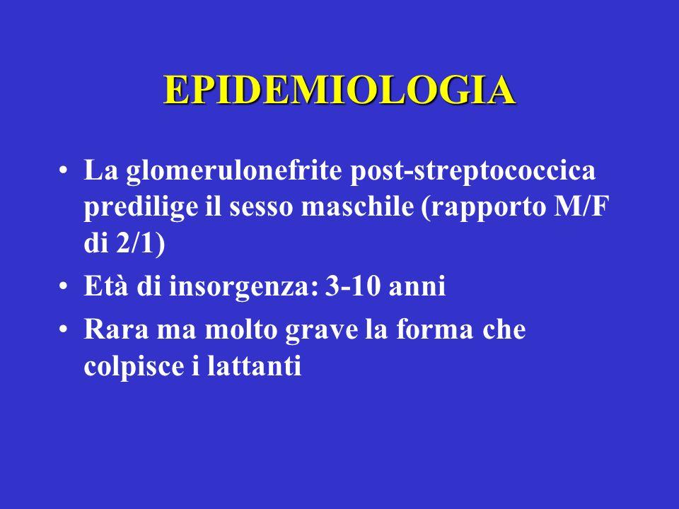 EPIDEMIOLOGIA La glomerulonefrite post-streptococcica predilige il sesso maschile (rapporto M/F di 2/1)
