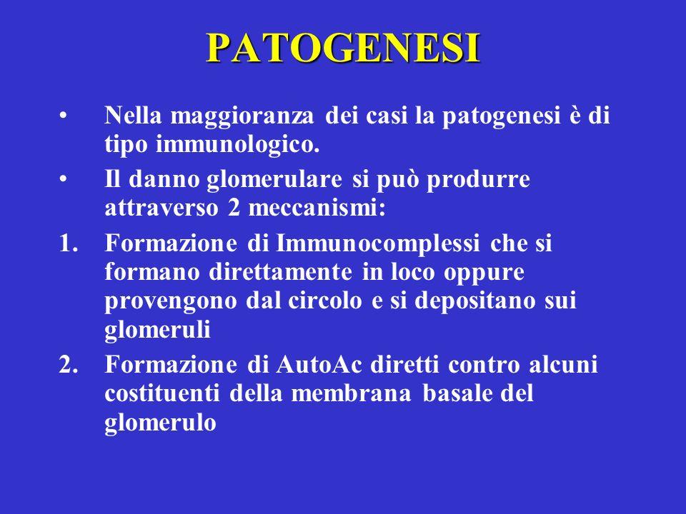 PATOGENESI Nella maggioranza dei casi la patogenesi è di tipo immunologico. Il danno glomerulare si può produrre attraverso 2 meccanismi: