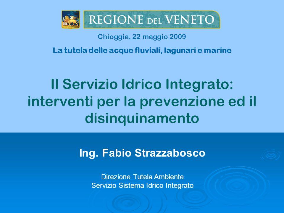 Chioggia, 22 maggio 2009 La tutela delle acque fluviali, lagunari e marine.