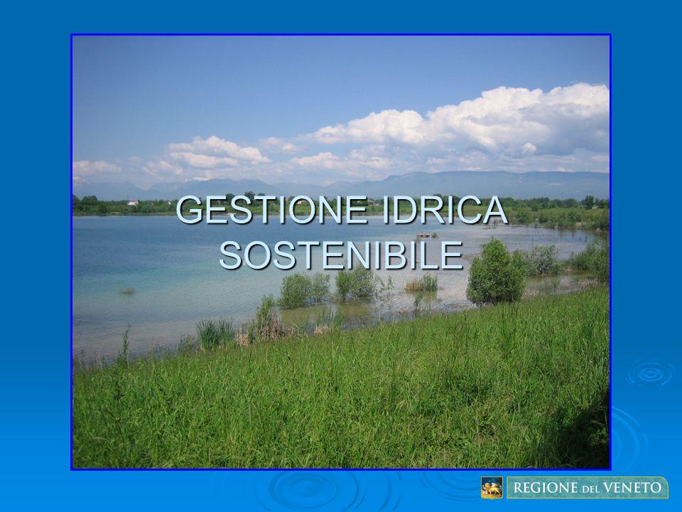 GESTIONE IDRICA SOSTENIBILE