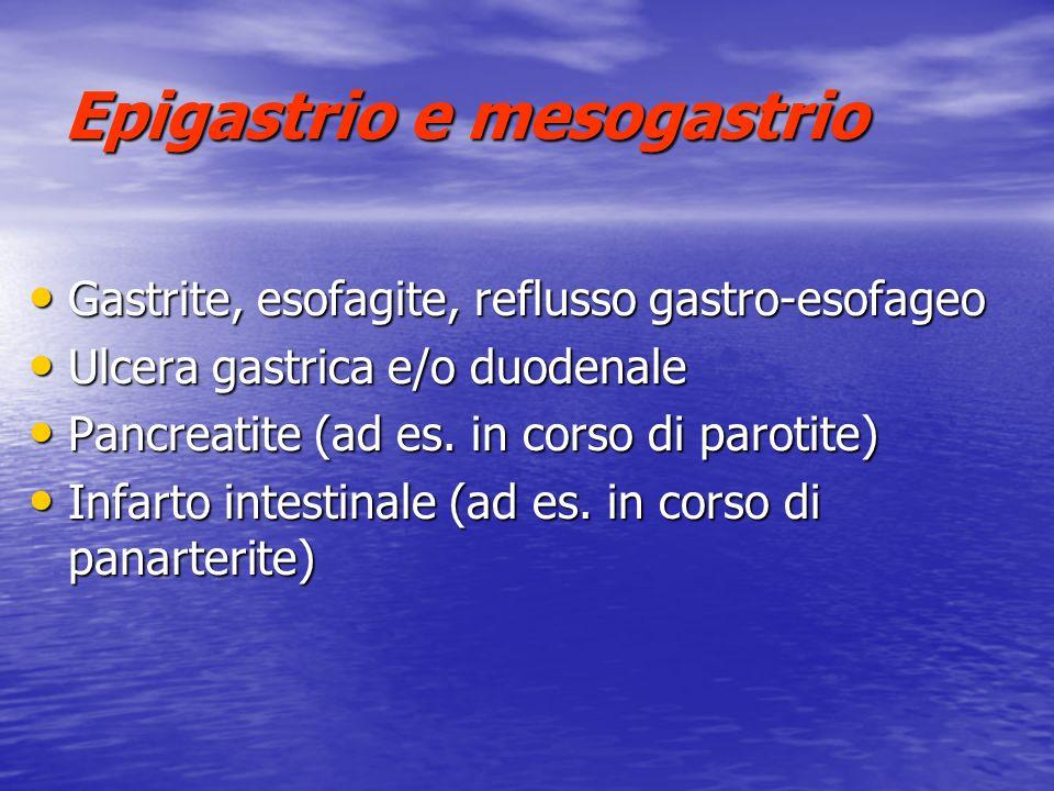 Epigastrio e mesogastrio