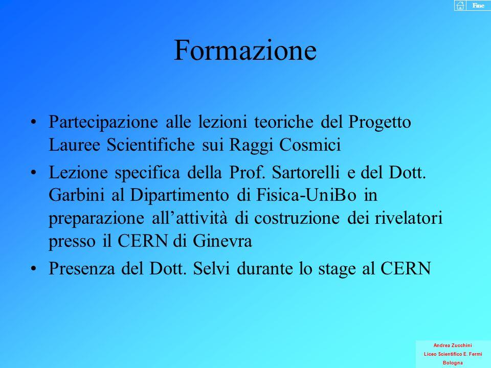 Formazione Partecipazione alle lezioni teoriche del Progetto Lauree Scientifiche sui Raggi Cosmici.