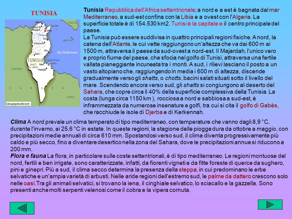 Tunisia Repubblica dell Africa settentrionale; a nord e a est è bagnata dal mar Mediterraneo, a sud-est confina con la Libia e a ovest con l Algeria. La superficie totale è di 154.530 km2. Tunisi è la capitale e il centro principale del paese.