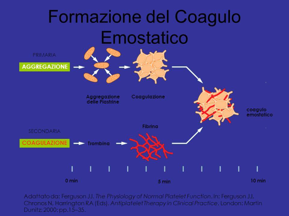 Formazione del Coagulo Emostatico