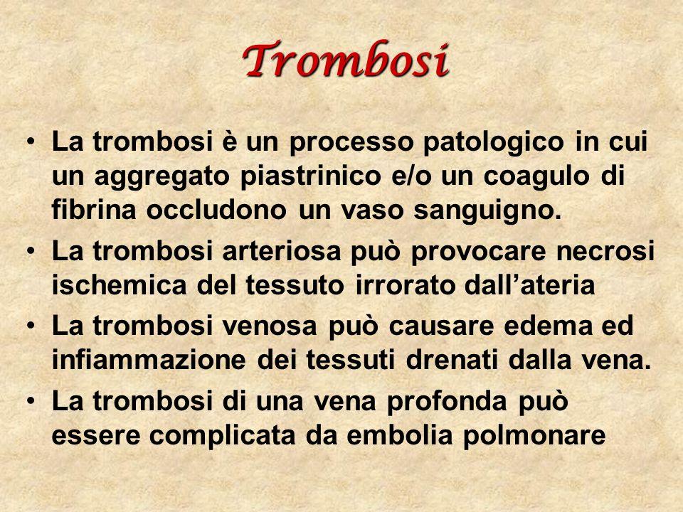 Trombosi La trombosi è un processo patologico in cui un aggregato piastrinico e/o un coagulo di fibrina occludono un vaso sanguigno.