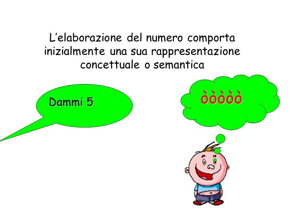 L'elaborazione del numero comporta inizialmente una sua rappresentazione concettuale o semantica