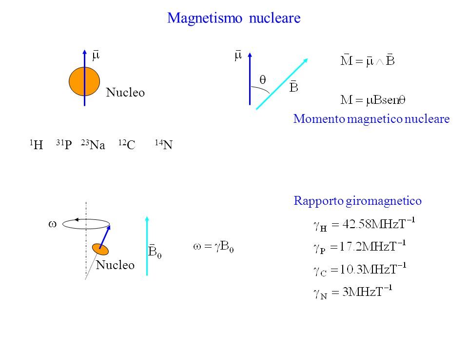 Magnetismo nucleare  Nucleo Momento magnetico nucleare