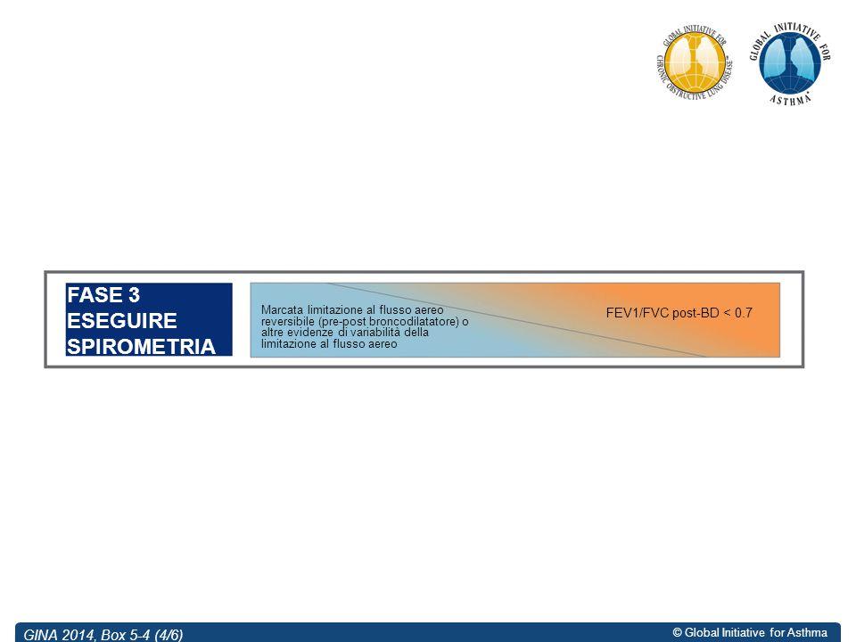 FASE 3 ESEGUIRE SPIROMETRIA GINA 2014, Box 5-4 (4/6)