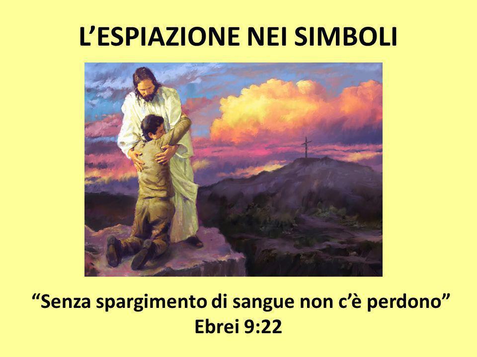 L'ESPIAZIONE NEI SIMBOLI Senza spargimento di sangue non c'è perdono Ebrei 9:22