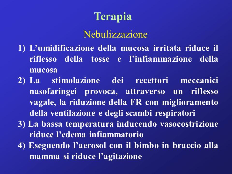 Terapia Nebulizzazione