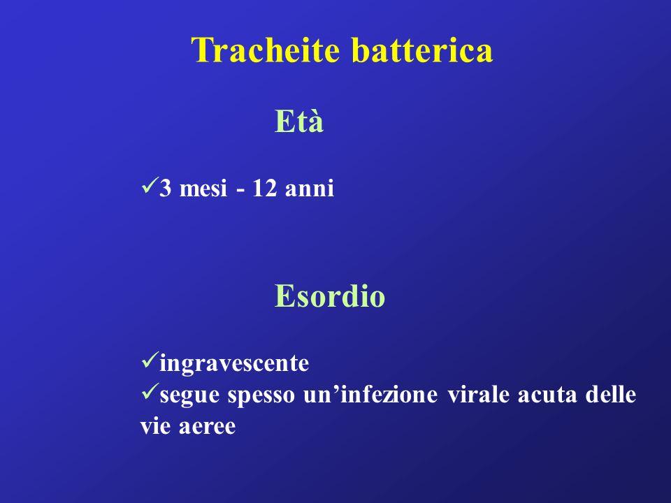 Tracheite batterica Età Esordio 3 mesi - 12 anni ingravescente