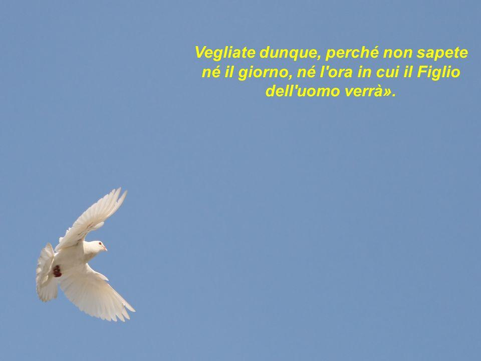 Vegliate dunque, perché non sapete né il giorno, né l ora in cui il Figlio dell uomo verrà».