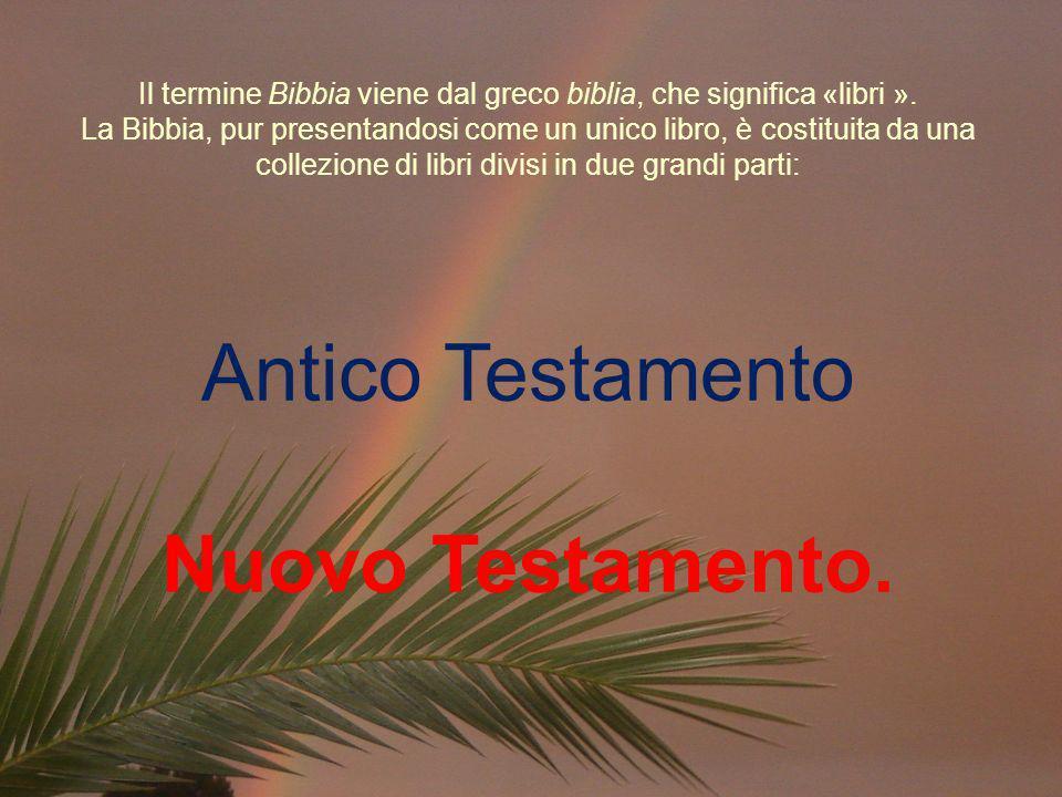 Il termine Bibbia viene dal greco biblia, che significa «libri »