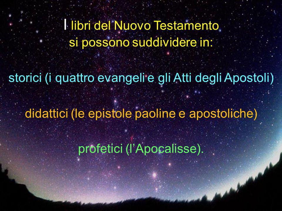 I libri del Nuovo Testamento si possono suddividere in: storici (i quattro evangeli e gli Atti degli Apostoli) didattici (le epistole paoline e apostoliche) profetici (l'Apocalisse).